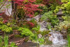 Het beekje is erg mooi aangelegd en ziet er natuurlijk uit. De kunst bij dit soort waterlopen is het integreren in de tuin. In deze kleine Japanse tuin is dat erg mooi gelukt, door het natuurlijke gebruik van keien en beplanting. Omdat je niet ziet waar de bron is lijkt het water van nature zo de tuin in te stromen.  Gezien in de 'Artisan Gardens' (ambachtstuinen) op de Chelsea Flower Show 2015.  Ontwerp: Kazuyuki Ishihara