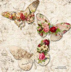 Butterflies. More
