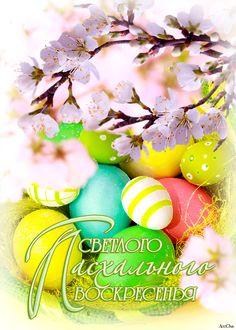 Светлого Пасхального Воскресенья !