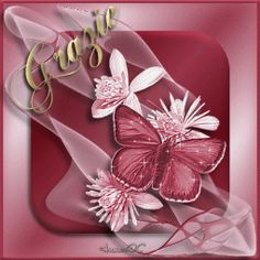 grazie As You Like, My Love, Prego, Emoticon, Beautiful Flowers, Gifts, Magnets, Butterfly, Frases