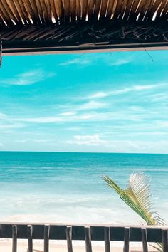 Costa Maya, Mexico   Tulum's natural cenotes, local flair, ancient ruins, and soft white-sand beaches make this enchanting retreat an ideal destination. Cruise with Royal Caribbean to Costa Maya and book one of many Tulum excursions to see this paradise up close.