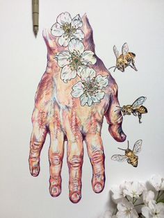 Artist Noel Badges Pugh (previously) creates studies of his own hands mixed with drawings of flowers and bees, adding color to the works with both watercolor and India ink. Pugh often photographs these works with the flowers he has drawn layered on top, allowing the viewer to examine how each is dra