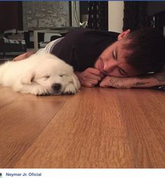 So cute Neymar Psg, Neymar Jr Wallpapers, World Cup 2014, Play Soccer, Professional Football, Best Player, New Puppy, Lionel Messi, Fc Barcelona