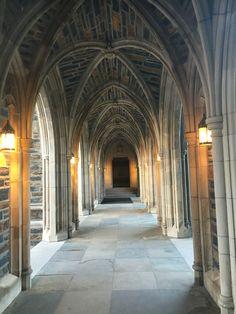 59 Best Gothic Wonderland images in 2012 | Duke, University