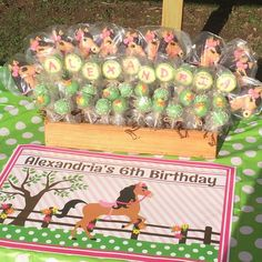#pony #birthday #cakepops #peanutbutter #chocolate #green #flowers #polkadot