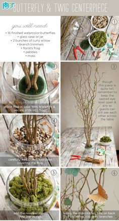 创意假花的制作—用树枝和纸蝴蝶DIY桌花教程╭★肉丁网