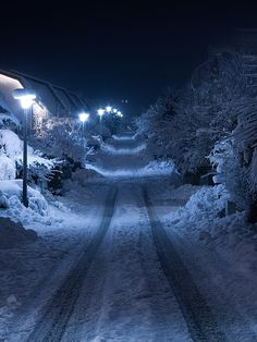 snow and street lights