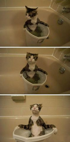 odd.... his spirit is not broken.... yet he is wet..... what sorcery is this?!?!