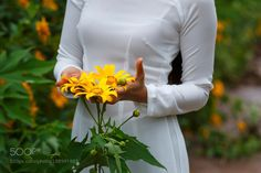 young girl and wild sunflowers by quangpraha check out more here https://cleaningexec.com