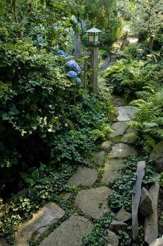 Jardin très vert avec allée