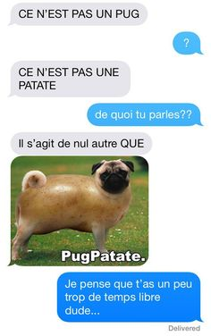 ConneriesQc | Rien de sérieux Wtf Funny, Funny Texts, Funny Jokes, Funny Messages, Text Messages, Morning Jokes, English Jokes, Rage, Pure Fun