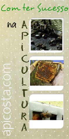 Quer começar a fazer apicultura então descubra como ter sucesso na apicultura com 4 dos muitos segredos que existem