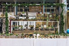 Image features My Little Succulent as captured by Bec Taylor at our Sydney, Market Stall Display, Farmers Market Display, Vendor Displays, Craft Booth Displays, Market Displays, Display Ideas, Booth Ideas, Vendor Booth, Stand Feria