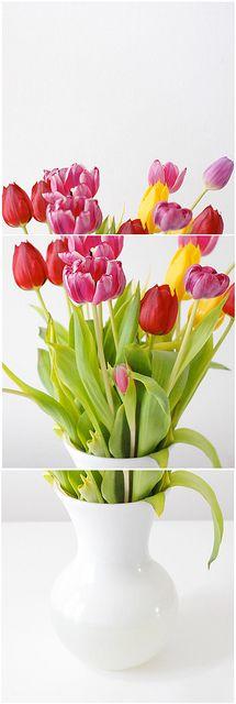 An Experiment.. Experiment, Tulips, Glass Vase, Plants, Home Decor, Decoration Home, Room Decor, Plant, Home Interior Design