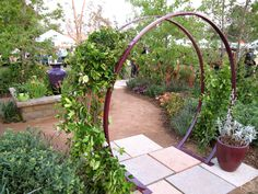 TerraTrellis Gracie Modern Arbor supporting jasmine and thunbergia vines.  An instant inviting entrance to a garden! Pop-up love! Get yours! #terratrellis