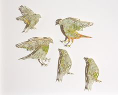 Claire Brewster: Birds cut from maps