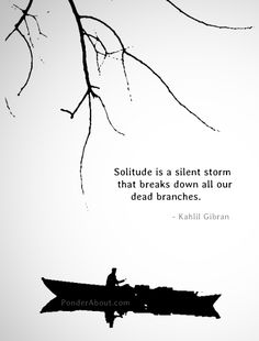 Solitude is a silent storm that breaks down all our dead branches. - Kahlil Gibran
