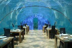 Photos of Ithaa Undersea Restaurant, Rangali, South Ari Atoll, Maldives