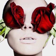 Roses everywhere we look. Roses are excellent for our skin. #aveseena #natureisbeautiful #skincareluxury #skincare #nontoxicbeauty #comingsoon  #highendbeauty #rose #glow #natural #healthy #healtyskin #photographer #benhassett