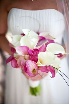 Fuchsia and White Calla Lilies - From Pastels to Vibrant Hues: 15 Most Beautiful Calla Lily Wedding Bouquets - EverAfterGuide