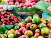 Jocotes - Mercado Antigua Guatemala in Color-1-7
