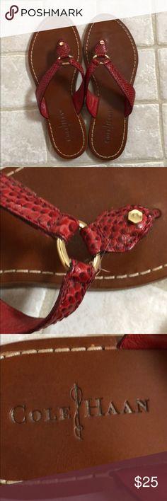 1a4dbe9b564173 ... Tommy Bahama Women s Havana Snake Leather Flip Flop Sandal 6 Click  image for more details ...