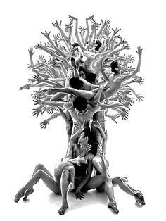 The Tree of Life - Photo Roman Shatsky (Роман Шацький), Sakartvelo-Ballet. Original in colour. °