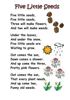 Themed poems - seeds and plants - Free! A selection of themed poems on the topic of seeds, growth, plants and planting. Perfect for kindergarten and first grade.