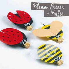 DIY Klammer-Käfer und -Bienen - (Bastelrezept als PDF)