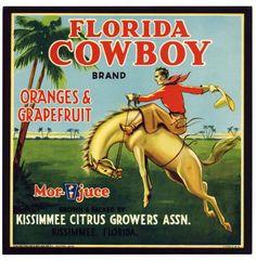 FLORIDA COWBOY Vintage Kissimmee Citrus Crate Label