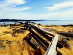 """Cattle Point"" at Oak Bay  Victoria BC"