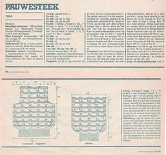 http://www.ravelry.com/projects/DirkjeK trui in #pauwensteek #peacockstitch