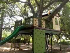 cabane-dans-les-arbres-maison-verte-avec-une-chute
