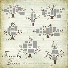 Family Wall Vinyl Decal Trees - Choose your style and contact us for more info! Family Tree Photo, Photo Tree, Family Trees, Decoration Photo, Decoration Entree, Picture Wall, Picture Frames, Wall Decals, Wall Art