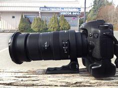 EOS 7D with Sigma 50-500mm F4.5-6.3 APO DG OS HSM