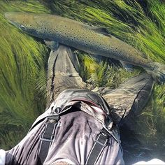 @simmsfishing with one of the coolest shots we have seen. Pic of Nils Folmer and his largest salmon of the season in Iceland.