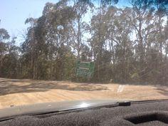 camping, flea creek, NSW national park, brindabella