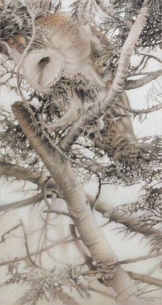 Paul Christiaan Bos Owlery series II: Sterre 1 houtskool, pastel & krijt op Ingres papier