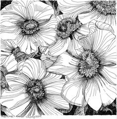 pen and ink flower by loracia
