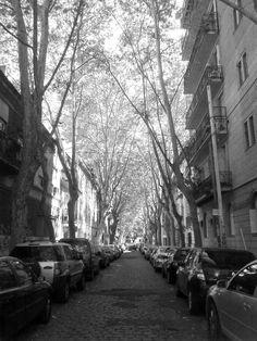 Snapshot. (Belgrano, Buenos Aires)