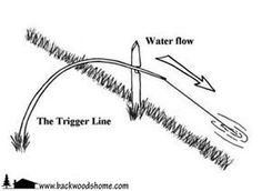 "The trigger line by Len McDougall.  ""Part spring snare, part fishing pole, a trigger line automatically sets its hook in a fish's mouth when it takes the bait.""  Keep in mind that a trigger line may be illegal in certain areas, except in actual survival conditions."