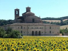 Best Of Italy, Palace Garden, Angelo, Palaces, Villas, Taj Mahal, Gardens, Urban, Mansions
