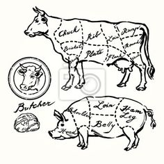 Find Pork Beef Cuts Hand Drawn Set stock images in HD and millions of other royalty-free stock photos, illustrations and vectors in the Shutterstock collection. Thousands of new, high-quality pictures added every day. Pig Illustration, Illustrations, Beef Cuts Chart, Culinary Tattoos, Pig Drawing, Cut Photo, Photo Texture, Christmas Poster, Convenience Store