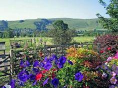 Beautiful English country garden