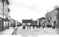 Molinella