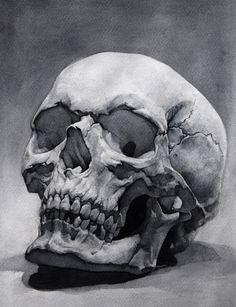 Skull study, me, watercolor, : Art Skull Anatomy, Anatomy Art, Skull Artwork, Skull Painting, Skull Tattoo Design, Skull Design, Tattoo Designs, Art Chicano, Skull Reference