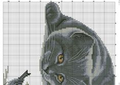 5ZXIeYyJ20E.jpg (2560×1816)