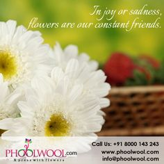 In joy or sadness, flowers are our constant friends. Follow @phoolwool for more updates.