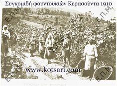 Συγκομιδή φουντουκιών Κερασούντα 1910 Greece History, Hero, Movie Posters, Outdoor, Outdoors, Film Poster, Outdoor Games, The Great Outdoors, Billboard