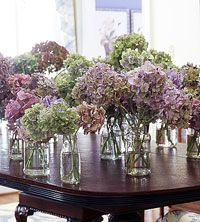 How to dry Hydrangeas.../